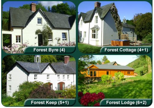 The Forest Cottages Self Catering, Kerry, Newtown